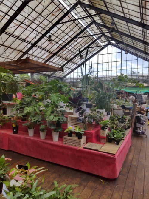 木村植物園ガーデン倶楽部の温室